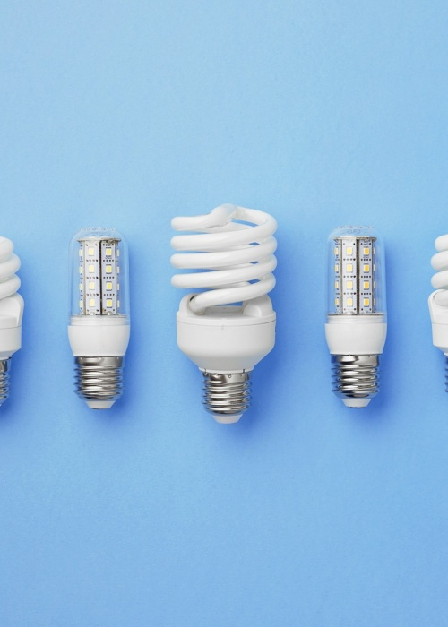 Energy saving light bulbs organized in a row over blue background, top view.