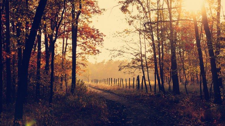 Cataluña en otoño…la plenitud del año